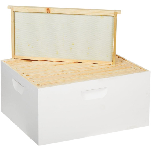 Little Giant 16.25 In. W. x 9.5 In. H.x 19.875 In. L. Assembled Deep Beehive, 10 Frames